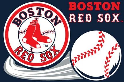 Boston Red Sox 20 x 30 Acrylic Tufted Rug