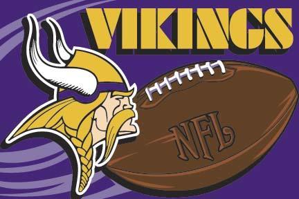 Minnesota Vikings 20 x 30 Acrylic Tufted Rug