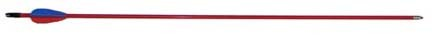 Safety Glass Arrows With 3″ Vanes…30″, 72 Arrows ( 1/2 Gross)