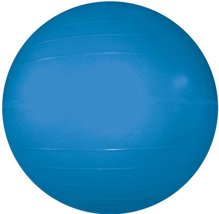 "22"" Exercise Ball (Blue)"