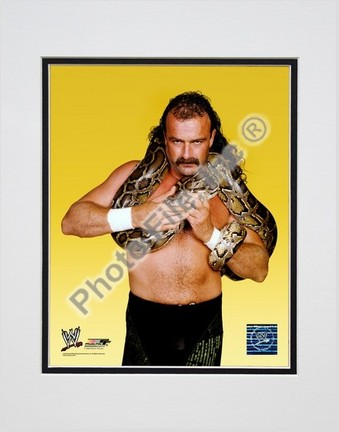 "Jake ""The Snake"" Roberts #352 Double Matted 8"" X 10"" Photograph (Unframed)"
