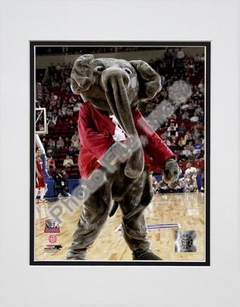"University of Alabama - Crimson Tide Elephant Mascot, 2004"""" Double Matted 8� x 10� Photograph (Unframed)"" PHF-AAJH018-33"