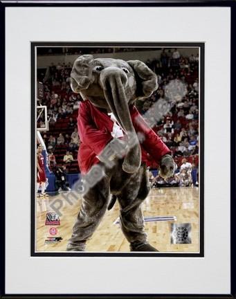 "University of Alabama - Crimson Tide Elephant Mascot, 2004"""" Double Matted 8"""" x 10"""" Photograph In Black Anodized Aluminum Frame"" PHF-AAJH018-37"