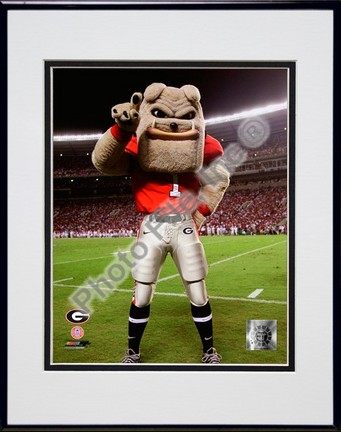 "The Univserity of Georgia Bulldogs Mascot 2007 Double Matted 8"" x 10"" Photograph in Black Anodized Aluminum Frame"