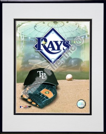 2008 Tampa Bay Rays Team Logo Double Matted 8� x 10� Photograph in Black Anodized Aluminum Frame PHF-AAKA018-37