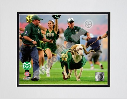 """Colorado State Rams """"Cam the Ram 2008"""" Double Matted 8"""" x 10"""" Photograph (Unframed)"""