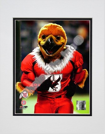"Utah Utes ""Mascot 2003"" Double Matted 8"" x 10"" Photograph (Unframed)"