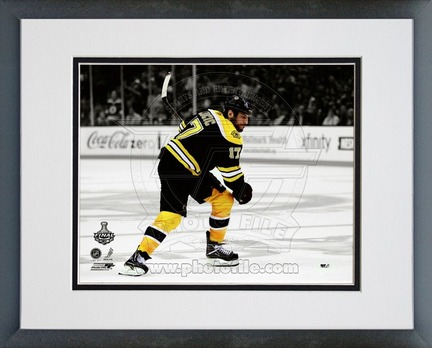 """Milan Lucic Boston Bruins 2011 NHL Stanley Cup Finals """"Game 3"""" Spotlight Action Double Matted 8"""" X 10&quo"""