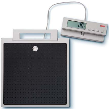 Seca 869 Flat Scale with Remote Display