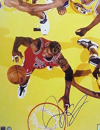 """Dennis Rodman Autographed Chicago Bulls (Rebounding) 16"""" x 20"""" Photograph (Unframed)"""