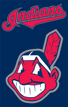 Cleveland Indians MLB Applique Banner Flag TPA-AFCLE