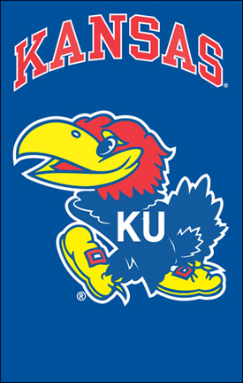 Kansas Jayhawks NCAA Applique Banner Flag TPA-AFKS
