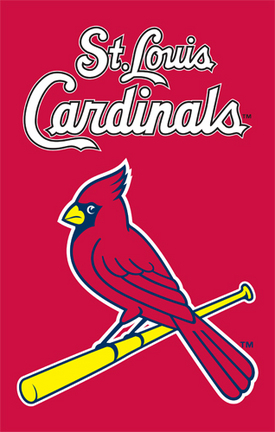 St. Louis Cardinals MLB Applique Banner Flag TPA-AFSTL