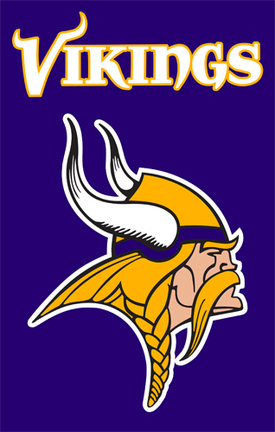 Minnesota Vikings NFL Applique Banner Flag