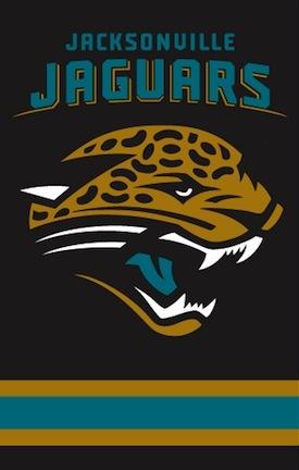 Jacksonville Jaguars NFL Applique Banner Flag TPA-AFJJ
